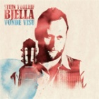 Cover: Stein Torleif Bjella - Vonde Visu (2011)
