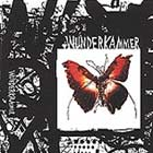 Cover: Wunderkammer - Today I Cannot Hear Music (2002)