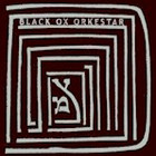 Cover: Black Ox Orkestar - Ver Tanzt? (2004)