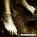 Cover: Rammstein - Liebe Ist Für Alle Da (2009)